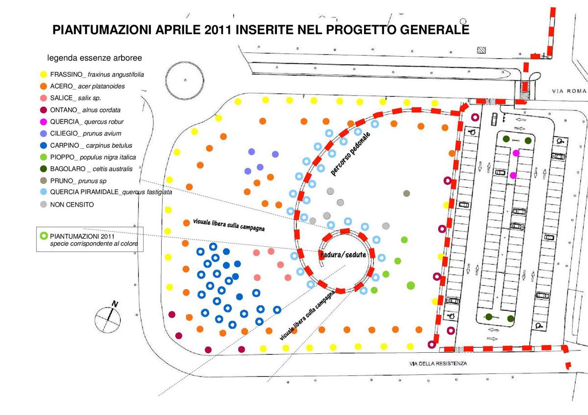 Piantumazioni aprile 2011 inserite nel progetto generale - via Roma - Liscate