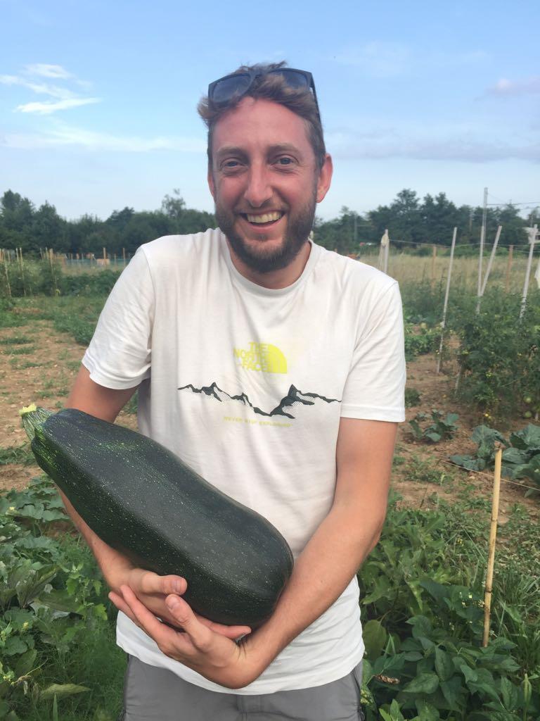 Ortico ad Usmate velate - il primo raccolto dell'orto