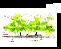 Sezione del pontile - Biotopo - Liscate